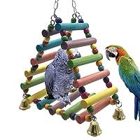 OSPet Puente de madera colorido para entrenamiento de loro, juguete para pájaros