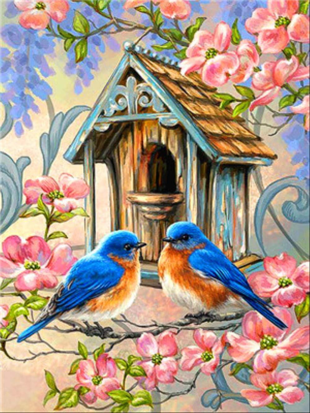 DUKEMG Nido de pájaro Pintura al óleo de Bricolaje Pintura por Kits de números Lienzo Arte de la Pared decoración del hogar para Adultos niños Principiantes Regalo 40x50cm con Pinceles enmarcados