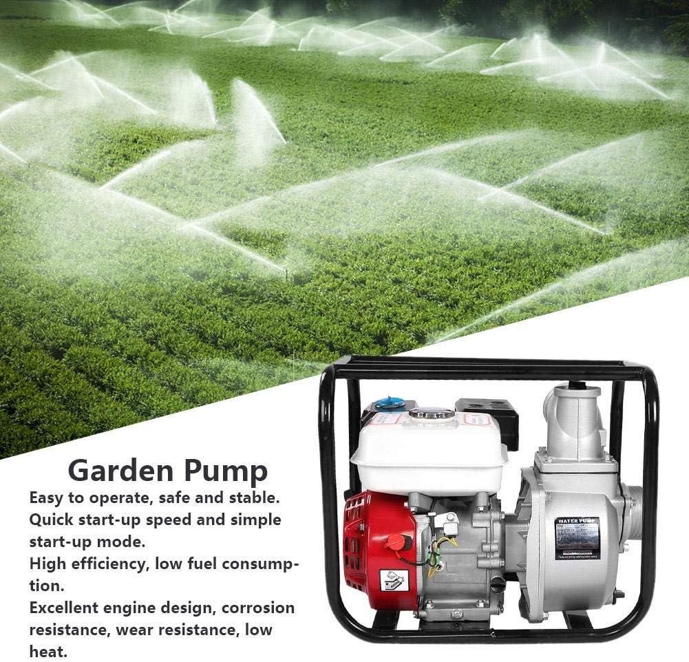 Amazon.com: Zoternen MP30X Bomba de transferencia de agua a ...
