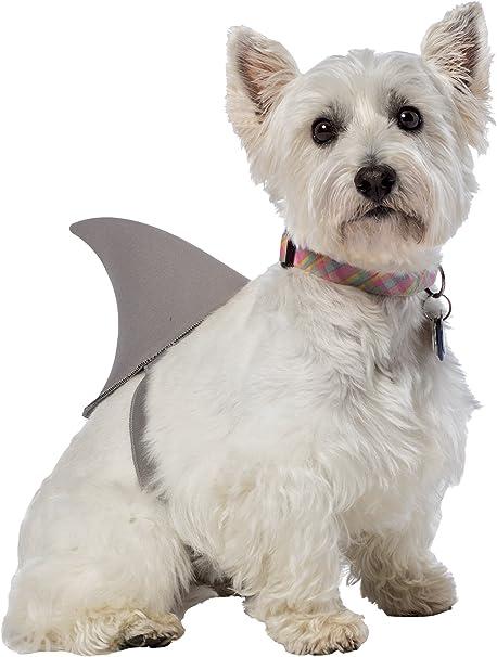 Small//Medium Rubie/'s Pet Shop Shark Fin Dog Costume