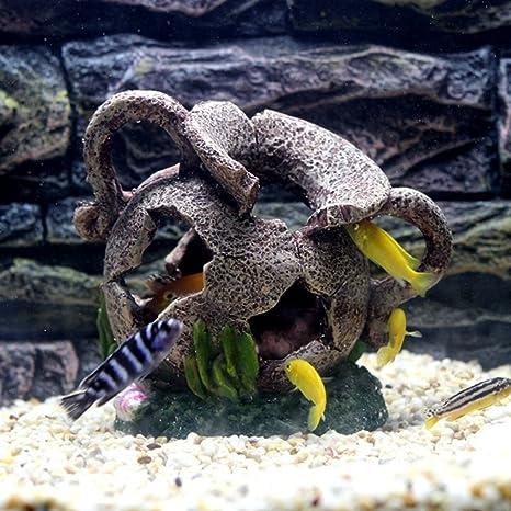 Decoración de belleza en forma de acuario de Hinmay para tortugas de pescado ocultas, belleza