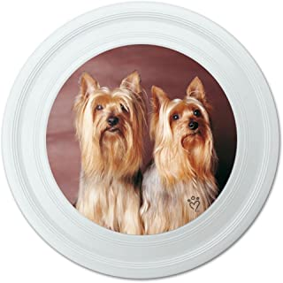 Graphique et Plus Yorkshire Terrier Buddies Fantaisie 22,9 cm Flying Disc 9 cm Flying Disc Graphics and More