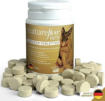 grünlippmuschelpulver hund dosierung