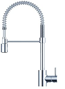 Danze DH451188 The Foodie Single Handle Pre-Rinse Kitchen Faucet, 1.75 GPM, Chrome