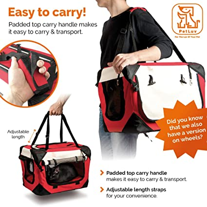 Amazon.com : PetLuv Happy Cat Premium Soft Sided Foldable Top & Side Loading Pet Carrier & Travel Crate - Locking Zippers Shoulder Carry Straps Seat Belt ...