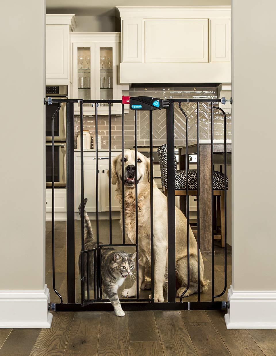 Carlson Pet Products Black Extra Tall Gate with pet Door 0941 PB DS