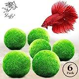 Luffy Betta Balls : Live Round-Shaped Marimo Plant : Natural Toys Betta Fish : Aquarium Safe