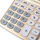 AYPBAIM Desktop Calculator with 12-digit Large Display,Solar Battery LCD Display Office Calculator (Gold)