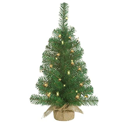 Lighted Christmas Pine Tree 18 Inches High with Battery Operated Timer and  Warm White LED Lights - Amazon.com: Lighted Christmas Pine Tree 18 Inches High With Battery