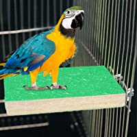 2 Pack Colorful Bird Perch Stand Platform Natural Wood Playground Paw Grinding Clean for Pet Parrot Budgies Parakeet Cockatiels Conure Lovebirds Rat Mouse Cage Accessories Exercise Toys