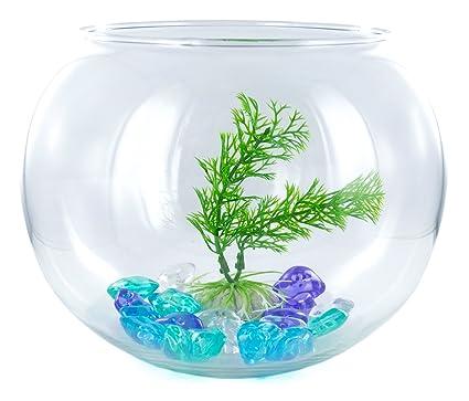 Tiempo de cáncer acuario peces con planta de arte 2.8L