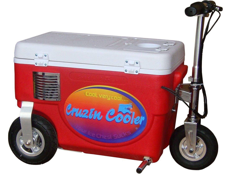 300 Watt Cruzin Cooler Wiring Diagram Electric Scooter Red Sports Outdoors 1500x1125