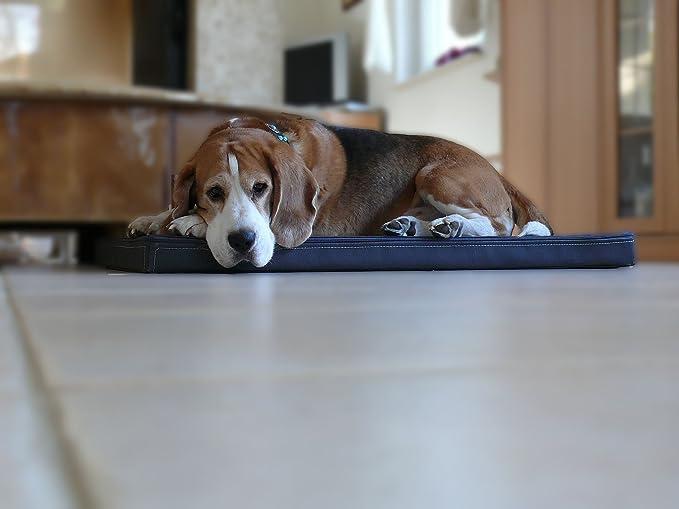 Omar - Ortho ortopédico hundematte piel sintética Perros cama colchón 90 x 120 cm, color beige: Amazon.es: Productos para mascotas