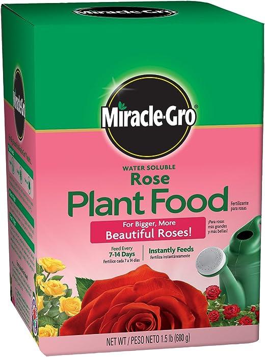 Top 10 Miracle Rose Food