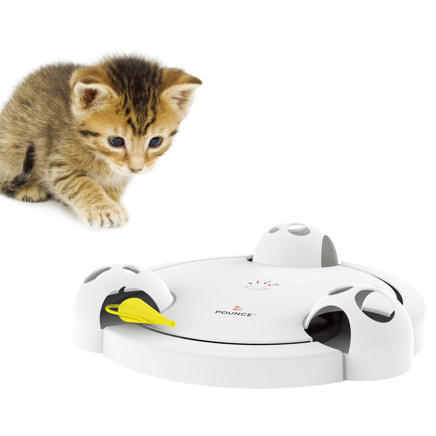 PetSafe Pounce Cat Toy, Interactive Automatic Toy for Cat or Kitten, Adjustable Electronic Battery Operated Toy by PetSafe (Image #4)