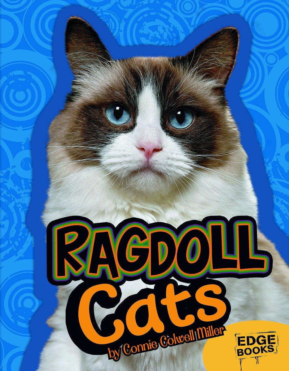 Ragdoll Cats All About Cats Joanne Mattern 9781429668675 Amazon