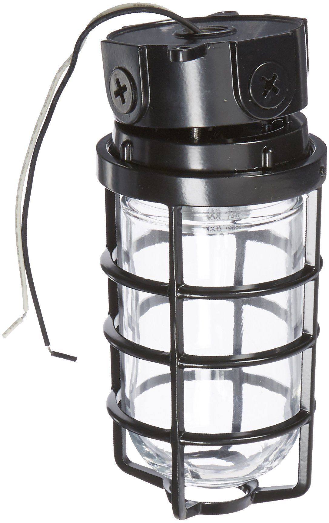 RAB Lighting VLX100DGB Vaporproof VLX 3'' Ceiling Box Mount with Glass Globe and Cast Guard, A19 Type, Aluminum, 150W Power, 1/2'' Hub, Black
