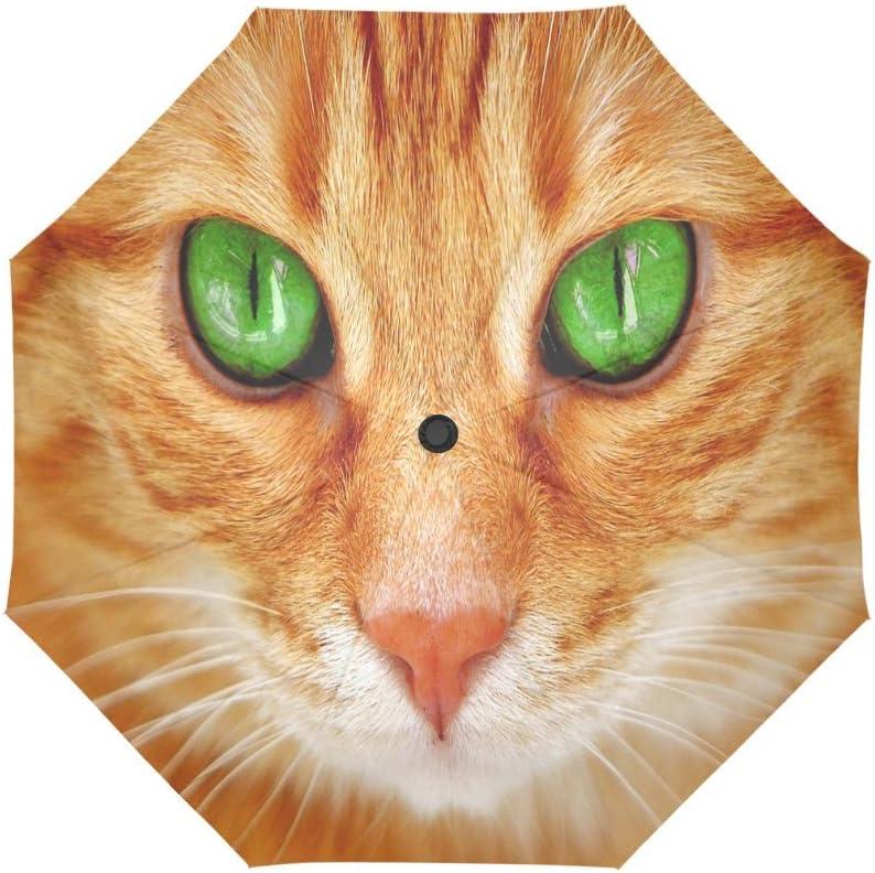 Design With Cat Eye Pattern Windproof Rainproof Automatic Foldable Umbrella,Travel Umbrella Compact Sun//Rain Hot-selling