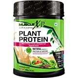 MuscleXP Plant Protein - Natural Protein Powder with Pea Protein, Herbal and Vegetable Blend, 400g (Sugar Free)