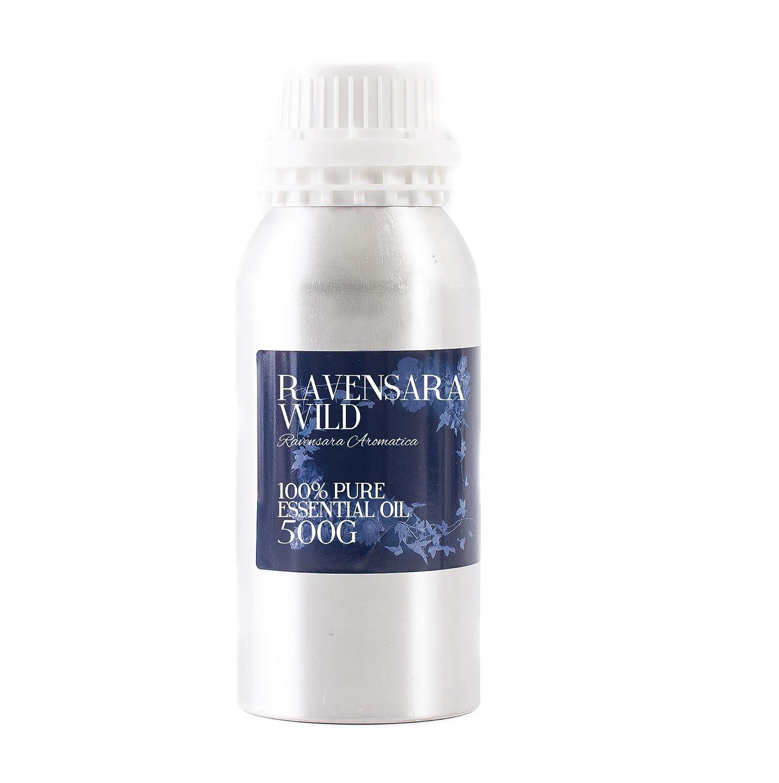 Mystic Moments | Ravensara Wild Essential Oil - 500g - 100% Pure   B01MCRGE61