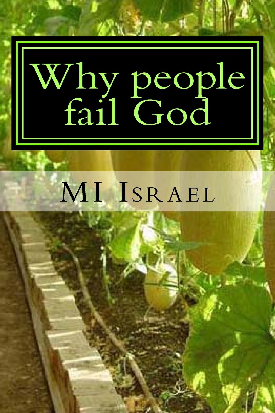 Download Why people fail God: 34 Reasons why people fail God pdf