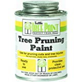 Tanglefoot Tree Pruning Sealer Can with Brush Cap