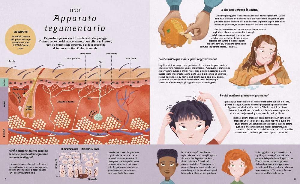 Ecco come funziona il corpo umano (A tutta scienza): Amazon.es: Nicola Edwards, G. Ermos, J. Maybank, F. Rupeno: Libros en idiomas extranjeros
