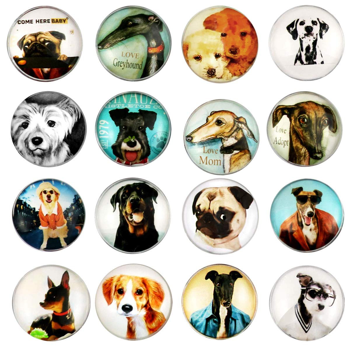 Pack-16 Cute Dog Refrigerator Magnets, Pretty Glass Fridge Magnets for Office Cabinet Whiteboard Photo, Cosylove Magnets for Home Decor