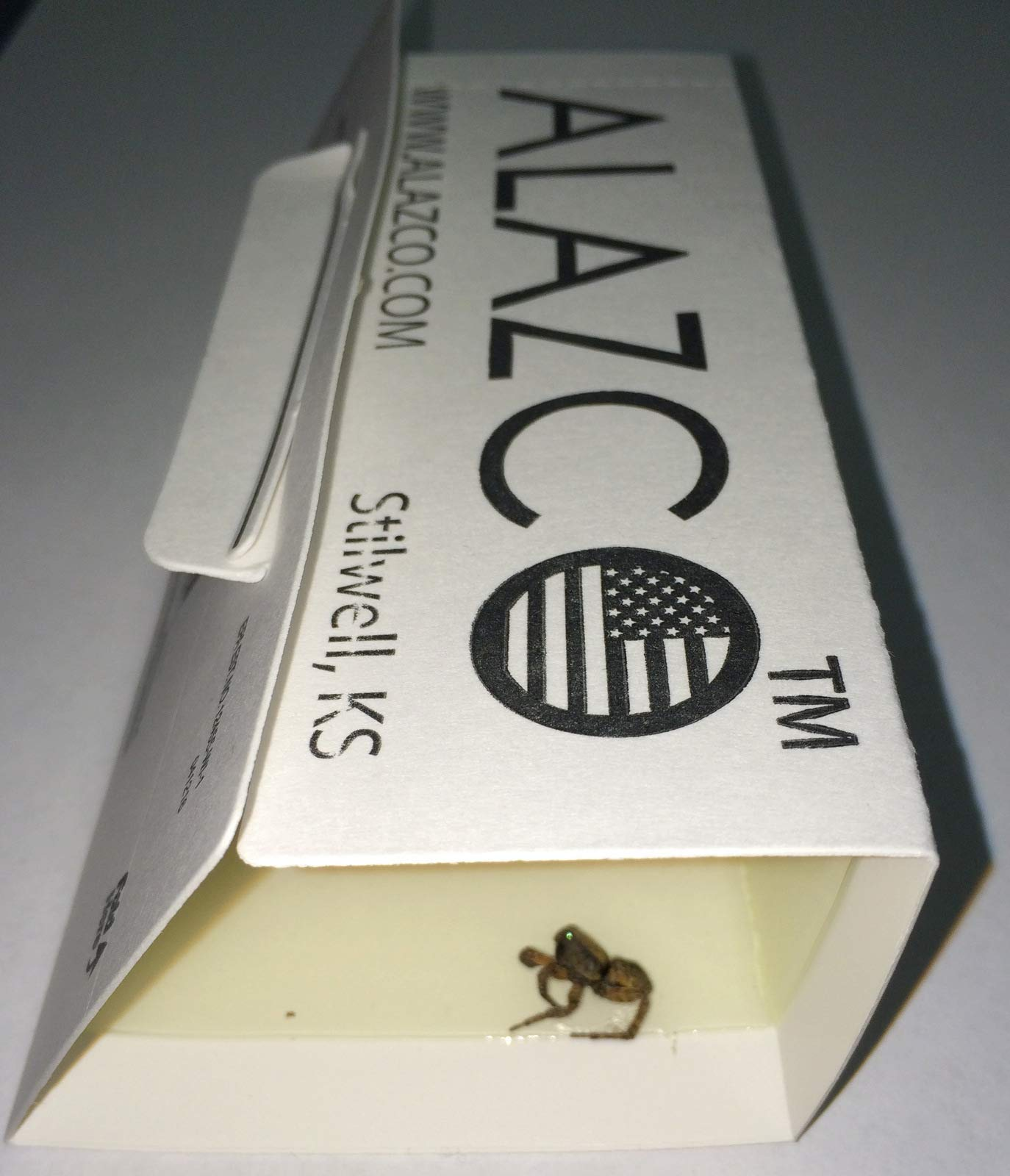 ALAZCO 12 Glue Traps - Excellent Quality Glue Boards Mouse Trap Bugs Insects Spiders Cockroaches Mice Trapper & Monitor NON-TOXIC by ALAZCO (Image #1)
