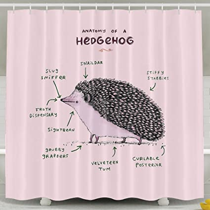 Anatomy Of A Hedgehog Shower Curtain Fabric Bathroom Set72x60 Inch