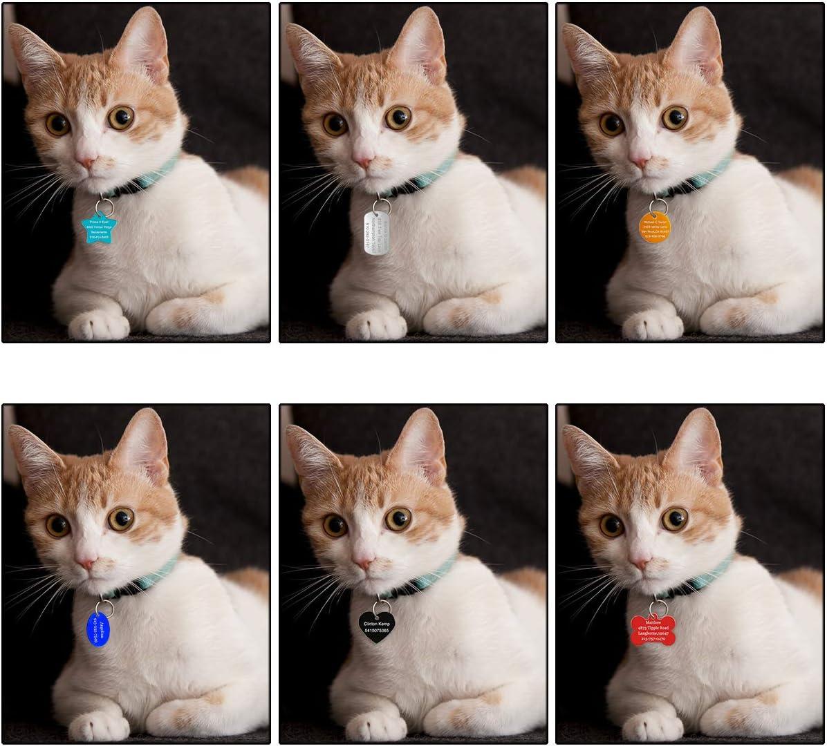 Etiqueta De Perro Personalizada De Acero Inoxidable y Etiqueta De Gato,9 Colores para Elegir GIFTSDIY Etiquetas De Identificaci/ón De Mascotas para Perros y Gatos