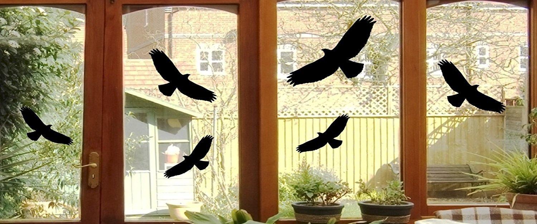 6uccelli sticker–Vetro della finestra GREIF Uccello Finestra immagine Je 24x 10cm B397, Plastica, nero, je ca. 24x10 cm Mabi-IN-Design