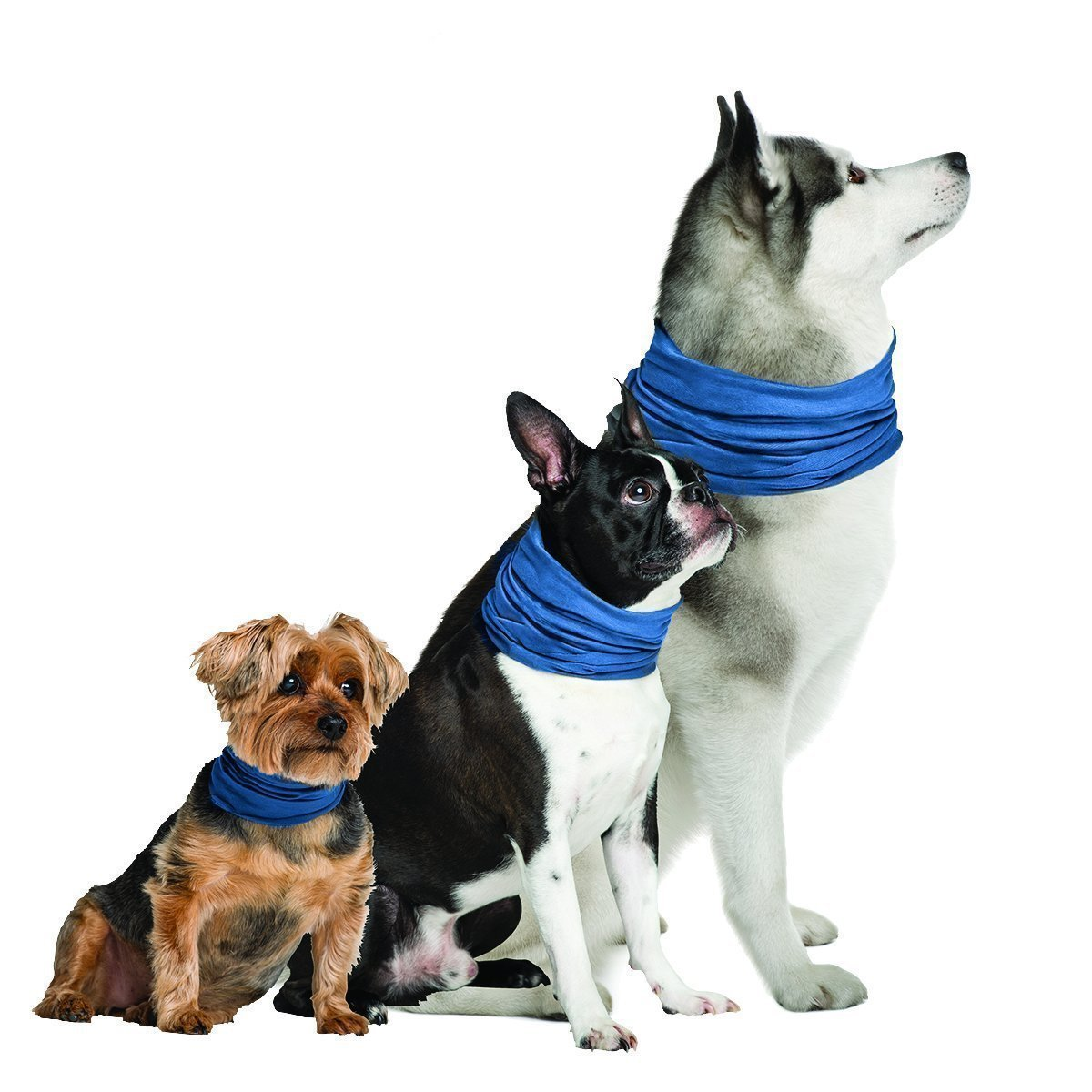 K9 Chill Dog Cooling Collar (Large/XLarge 20'' - 30'')