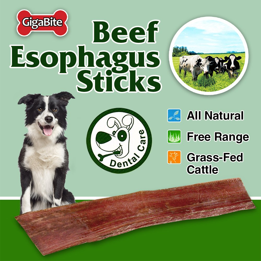 GigaBite 6 Inch Beef Tendon Sticks (15 Pack) – USDA & FDA Certified All Natural, Free Range Beef Tendon Dog Treat – By Best Pet Supplies by Best Pet Supplies, Inc. (Image #3)
