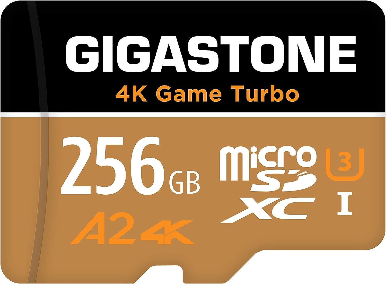 Gigastone UHS-I U3 256GB
