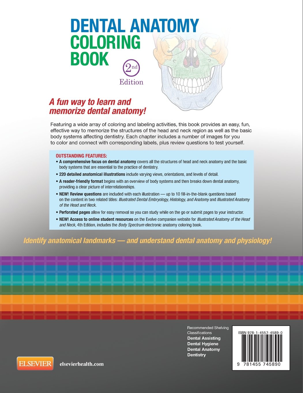Dental Anatomy Coloring Book: Amazon.co.uk: Margaret J. Fehrenbach ...