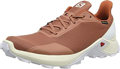 Salomon Alphacross GTX, Zapatillas de Trail Running para Hombre: Amazon.es: Zapatos y complementos