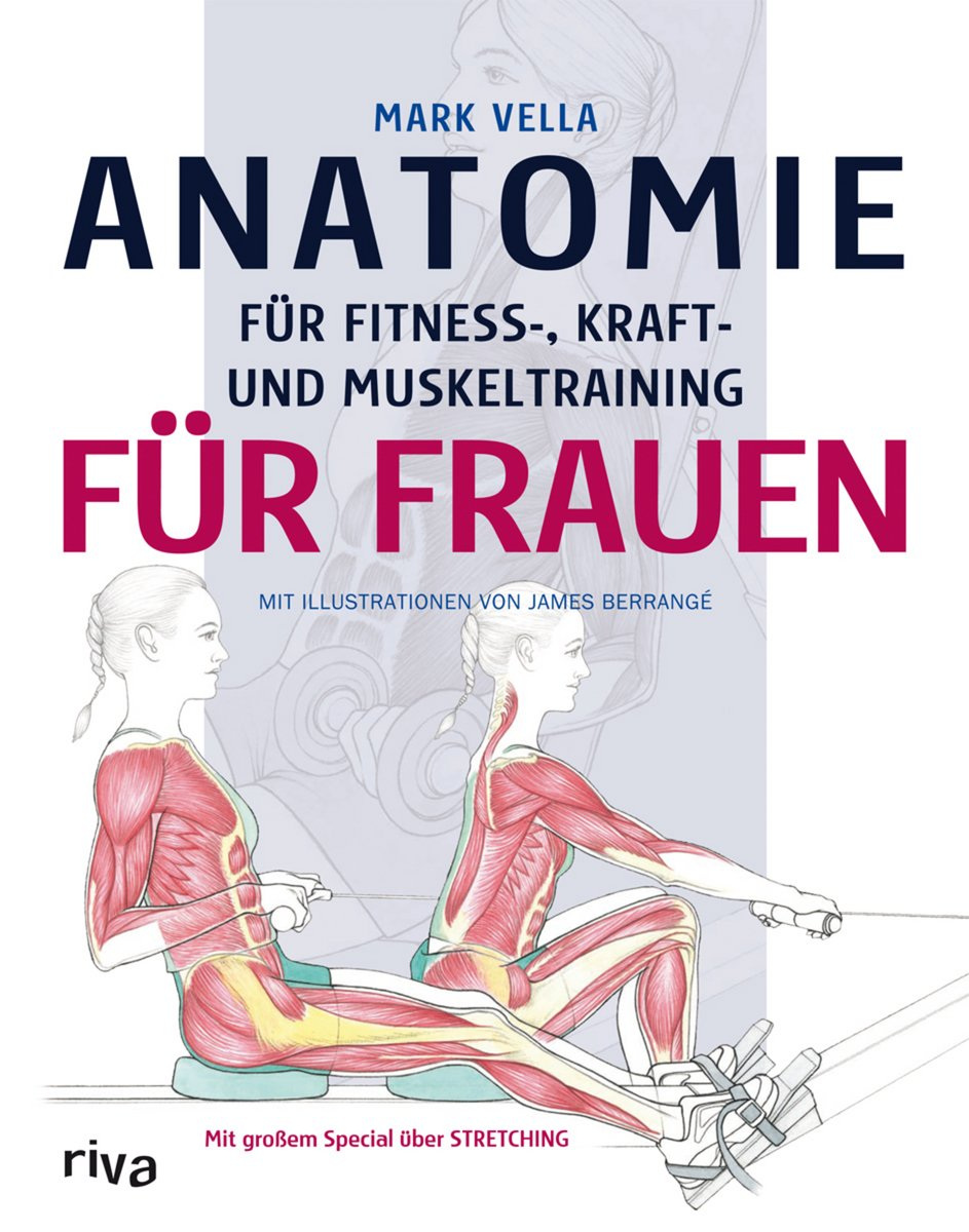 Berühmt Itec Anatomie Und Physiologie Vergangenheit Papiere ...