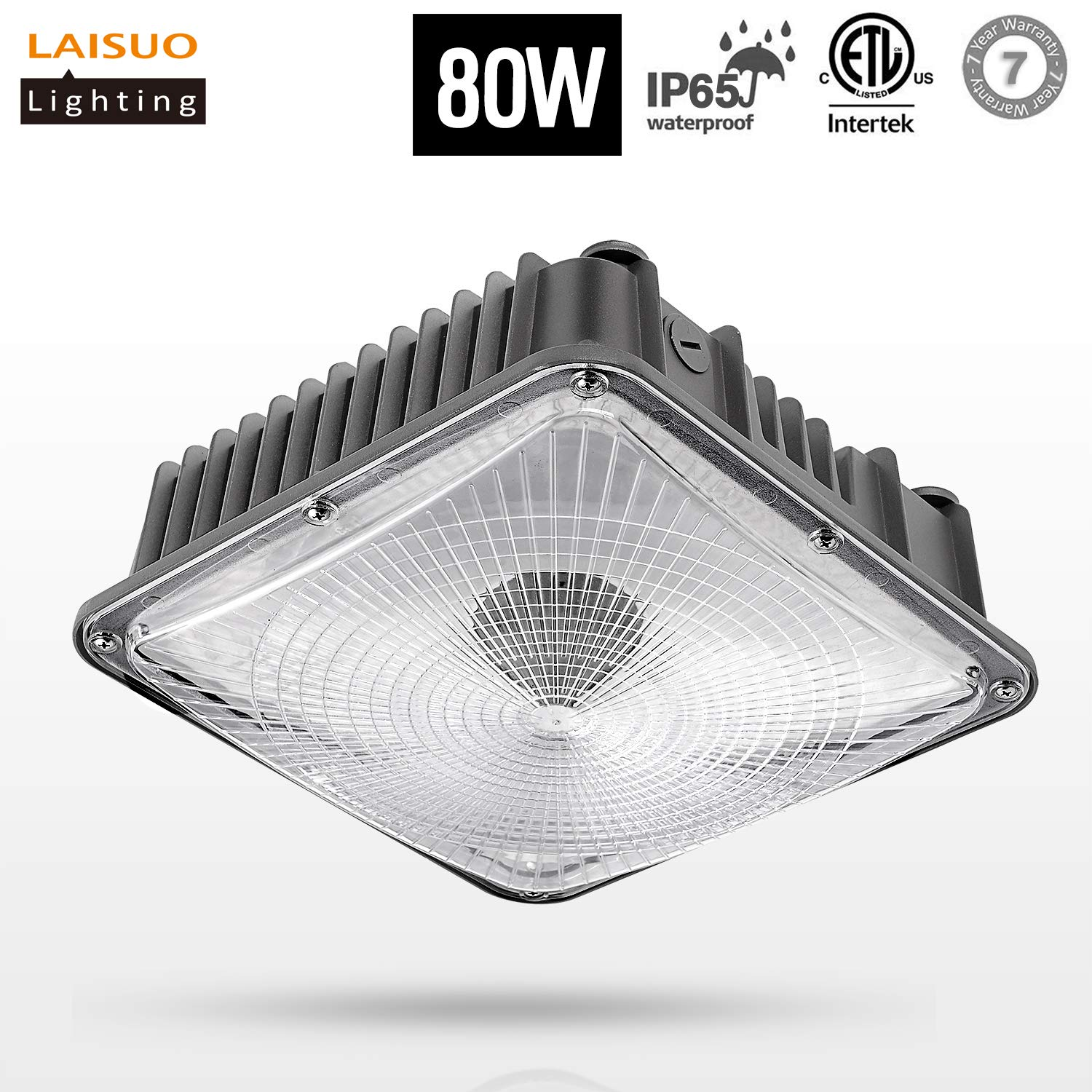 80W LED Canopy Light (250W Hps/MH Bulb Replacement),Isolated Power 5000K Daylight White,9200 Lumens, IP65 Waterproof for Playground, Gym, Warehouse, Garage, Backyard, ETL Listed