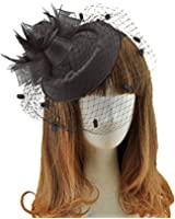 Fascinators Hair Clip Headband Pillbox Hat Bowler Feather Flower Veil Wedding Party Hat