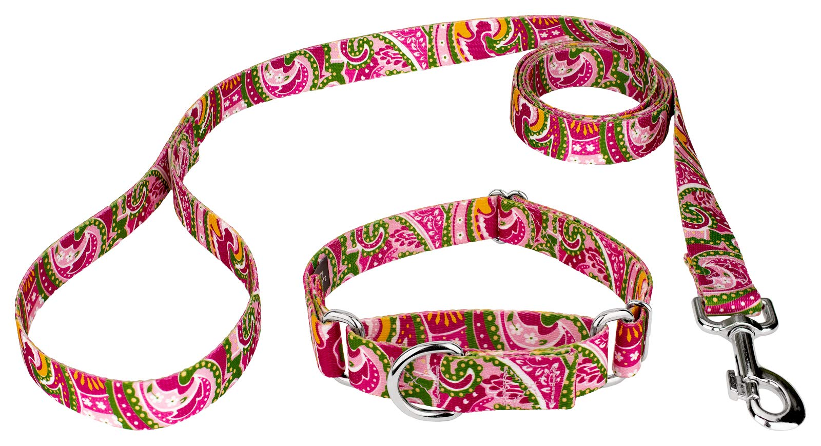 Country Brook Design Pink Paisley Martingale Dog Collar & Leash - Medium