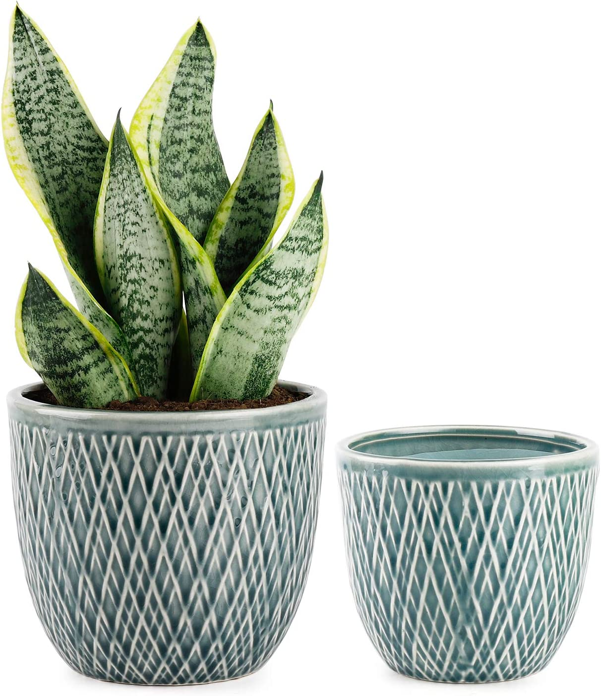 Greenaholics Plaid Ceramic Planters 4.7 5.9 Inch Plant Pots with Drain Hole Flower Plant Pots for Indoor Decor Blue Set of Two