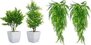 Huryfox 2 Pack Artificial Mini Plants in Pots & 2 Pack Hanging Vines for Home Decor Indoor Aesthetic, Faux Green Leaves Fake Plant for Desk and Shelf in Bathroom/Bedroom/Living Room/Farmhouse