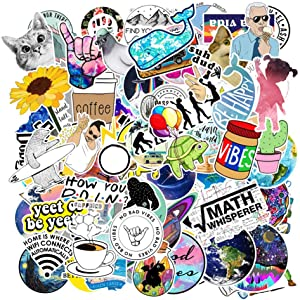FISINY 103 Pcs Network Popular Stickers Aesthetic Trendy Stickers Cute Funny Stickers for Teens,Girls | Perfect for Wter Bottle,Laptop,Phone,Hydro Flask Travel Vsco Vinyl Stickers