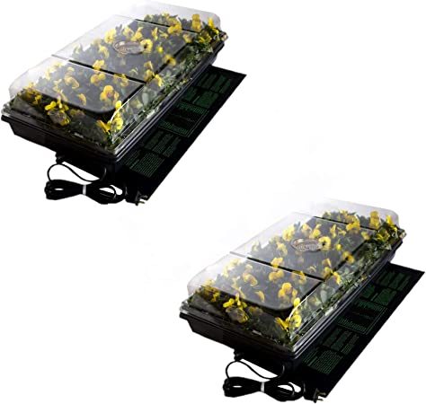 """Hydrofarm CK64060 72 Cell Pack 6/"""" Dome Hot House With Heat Mat /& Tray"""