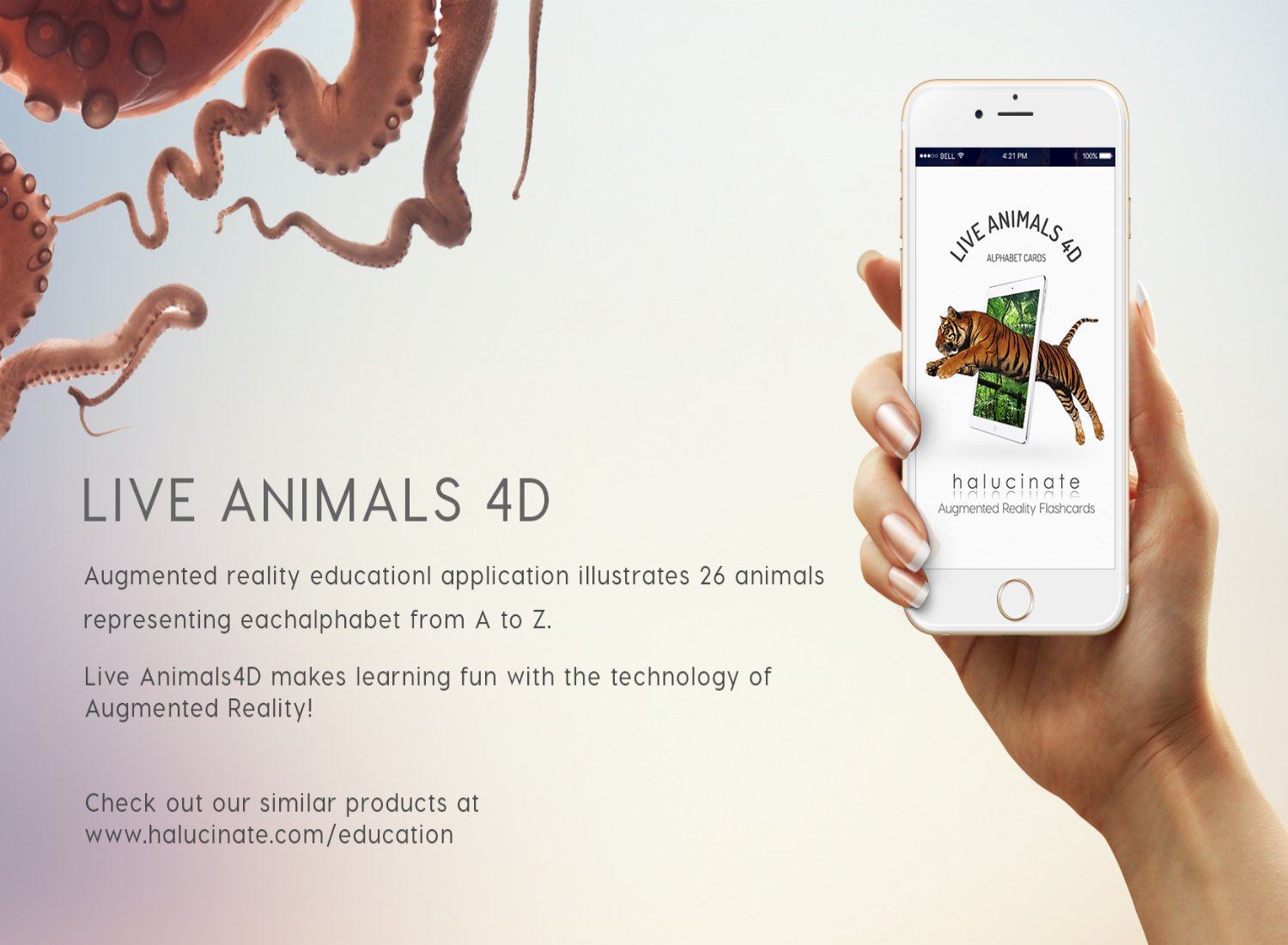 Live Animals 4D - Augmented Reality Learning Flash Cards product image