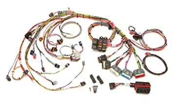 Amazon.com: Painless Wiring 60213 Fuel Injection Wiring ... on 1972 chevy truck harness, radio harness, painless fuse box, front lead dog harness, indestructible dog harness, chevy tbi harness, rover series 3 diesel harness, 5.3 vortec swap harness, bully dog harness, 5 point harness, painless engine harness, horse driving harness, racing seat harness, horse team harness, dodge ram injector harness, duraspark harness, electrical harness, ford 5.0 fuel injection harness, fuel injector harness, car harness,