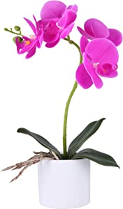 LUEUR Artificial Orchid Flower Bonsai with Vase Fake Potted Orchid Flower Arrangement Purple Phalaenopsis Flowers in Pot for Home Office Decor Table Centerpiece Decorations