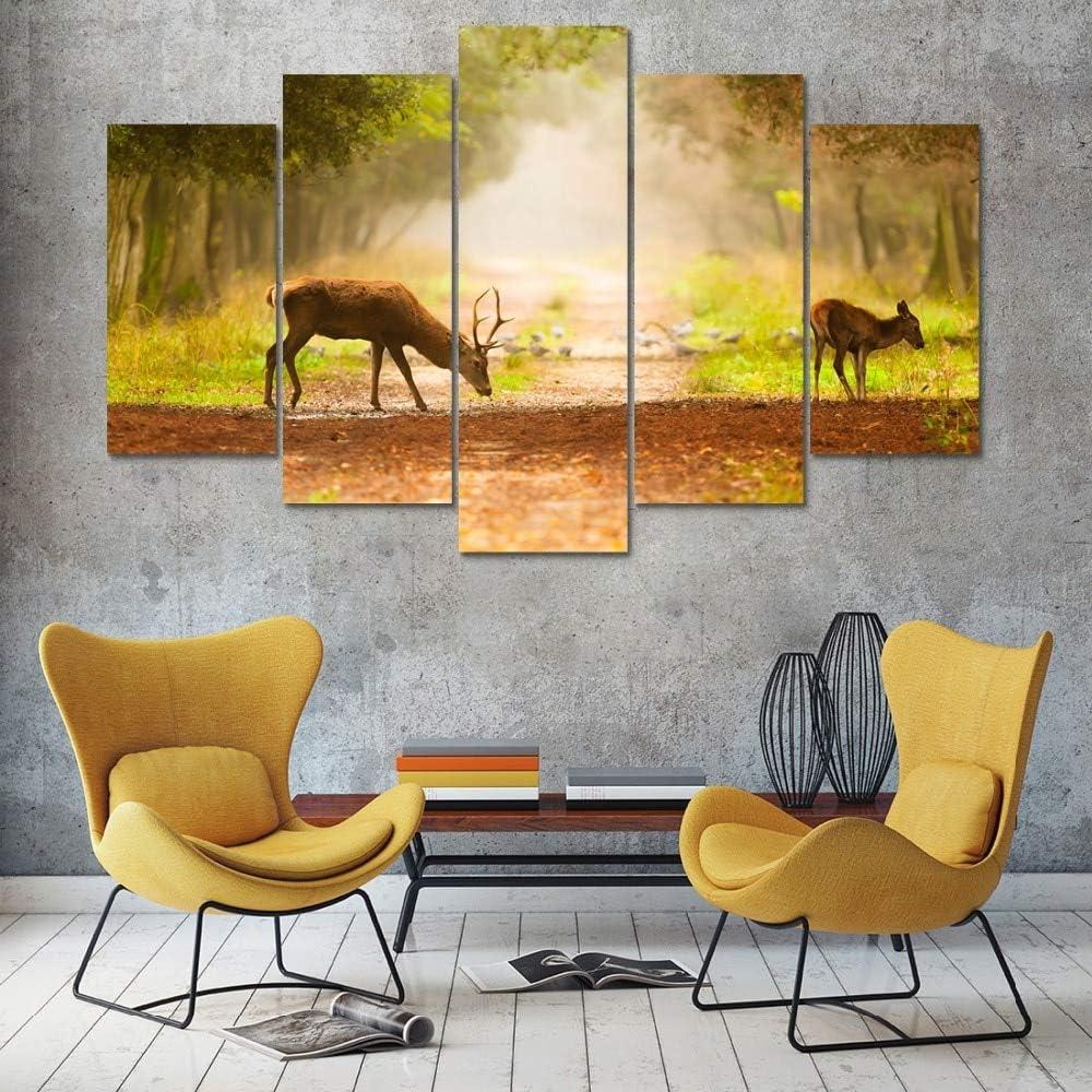 mmwin Lienzo Arte de la Pared Imágenes Cocina Restaurante Decoración 5 Unidades Bosque Animal Antílope Forraje Sala de Estar HD Impresos Carteles: Amazon.es: Hogar