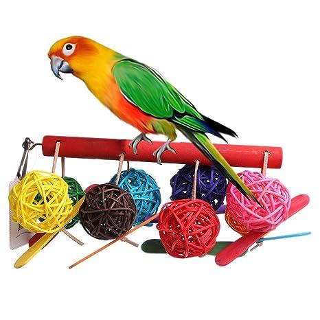 Tandou Bunter Mascotas Loros Juguete pájaro Bell Ball para para ...